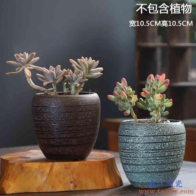 倾斜绿化墙植物墙_人造植物墙市场_植物墙的制作方法